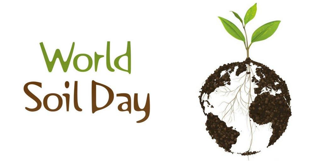 (Polski) Światowy Dzień Gleby – grafiki promujące wydarzenie